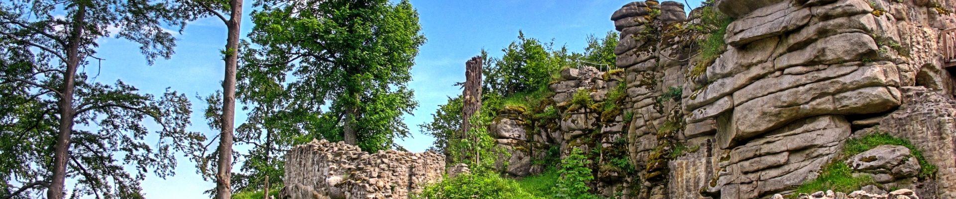 Urlaub im Steinwald, rund um das ARIBO Hotel in Erbendorf